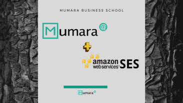 Why you should Choose Mumara for your Amazon SES